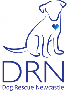 DRN Logo with words white-large (2) (1)